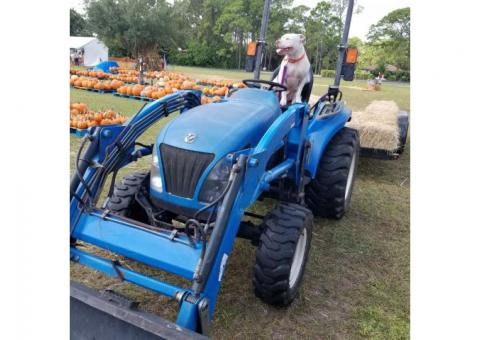 New Holland CT 33D 4x4 Diesel Tractor